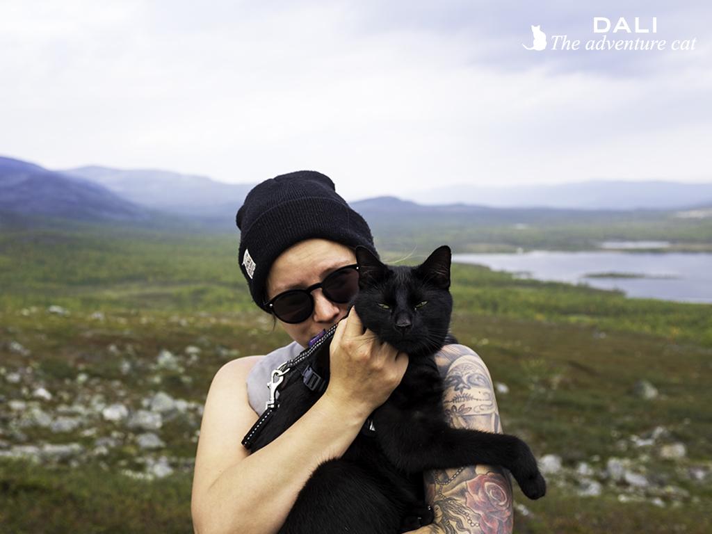 Hyvää äitienpäivää kissojen äidit