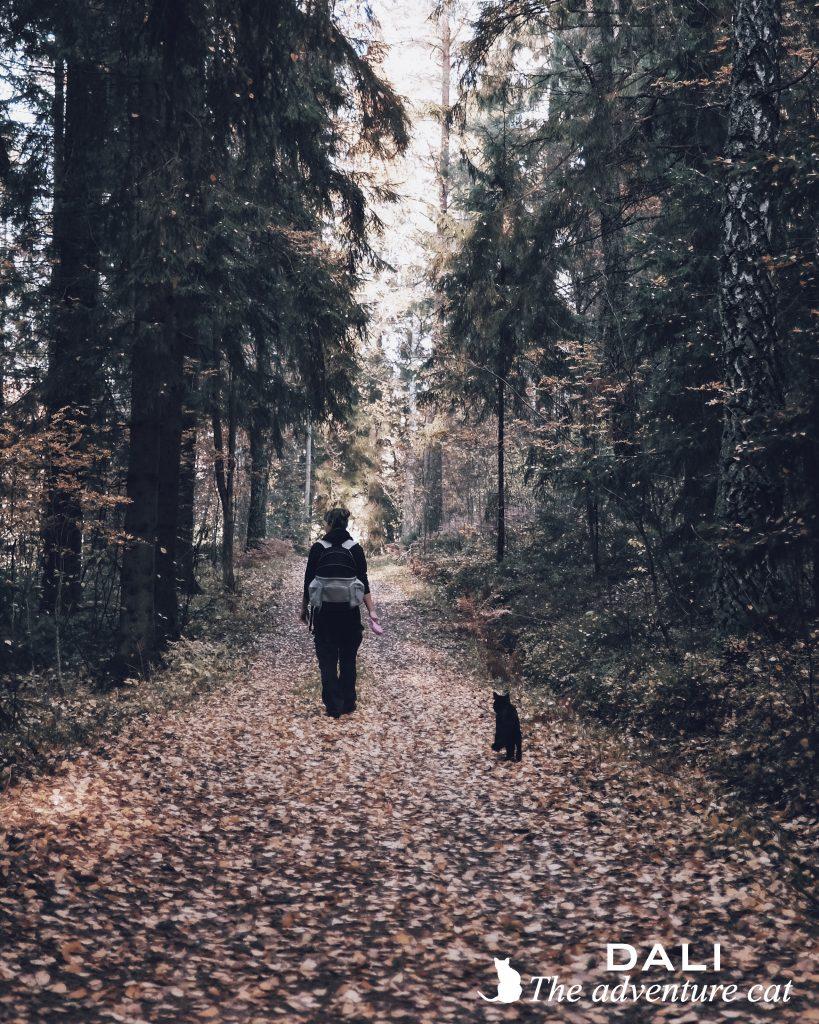 Kissan kanssa patikoimaan