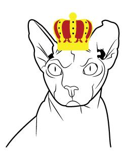 kissasivustoja