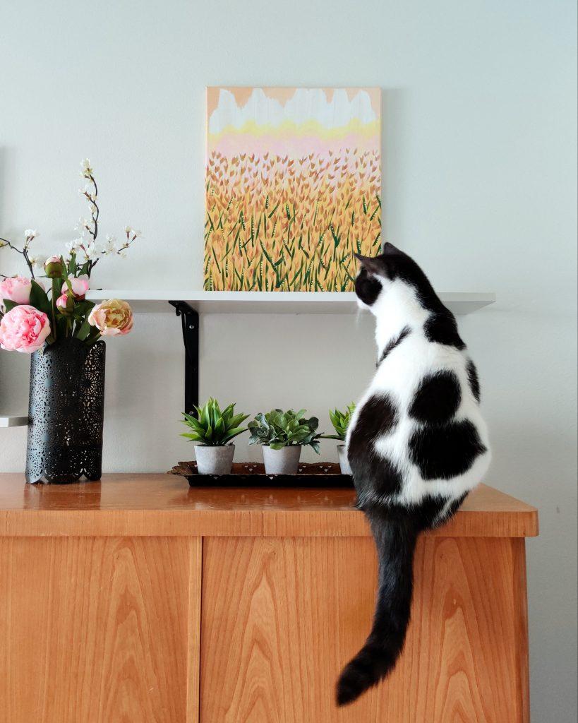 taide ja kissa