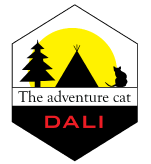Dali the adventure cat